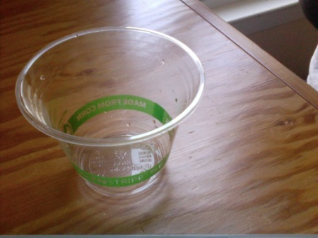 Biodegradable plastic cup from Ecoproducts